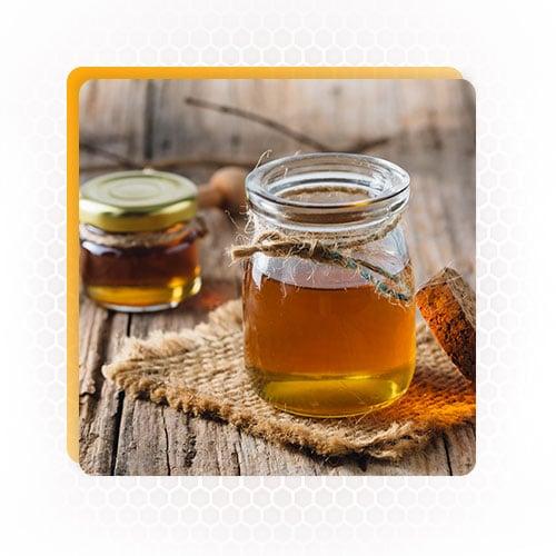 beekeeping tools and equipmen