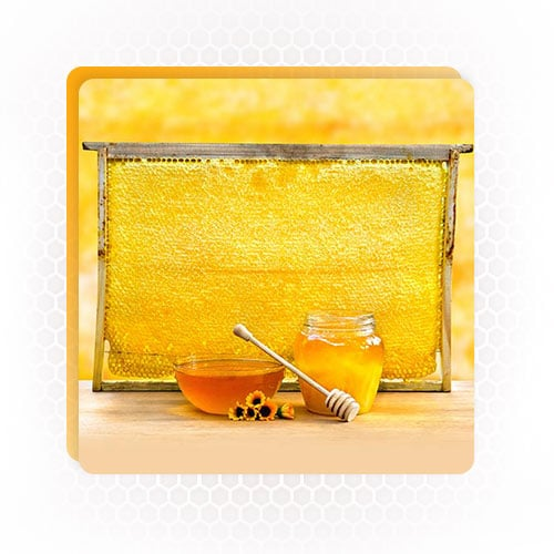 Bee by products honeycomb