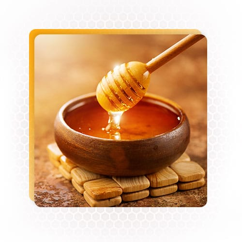buy honey in bulk