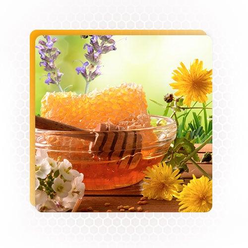 Multiflora-Honey