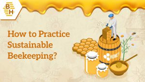 Beehively_How-to-Practice-Sustainable-Beekeeping