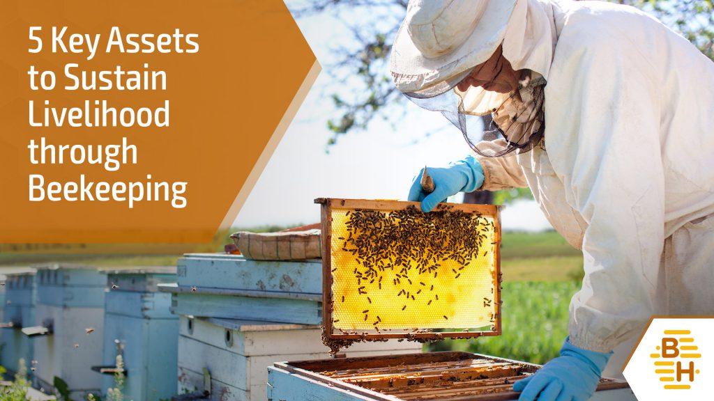Blog 7 - 5 Key Assets to Sustain Livelihood through Beekeeping