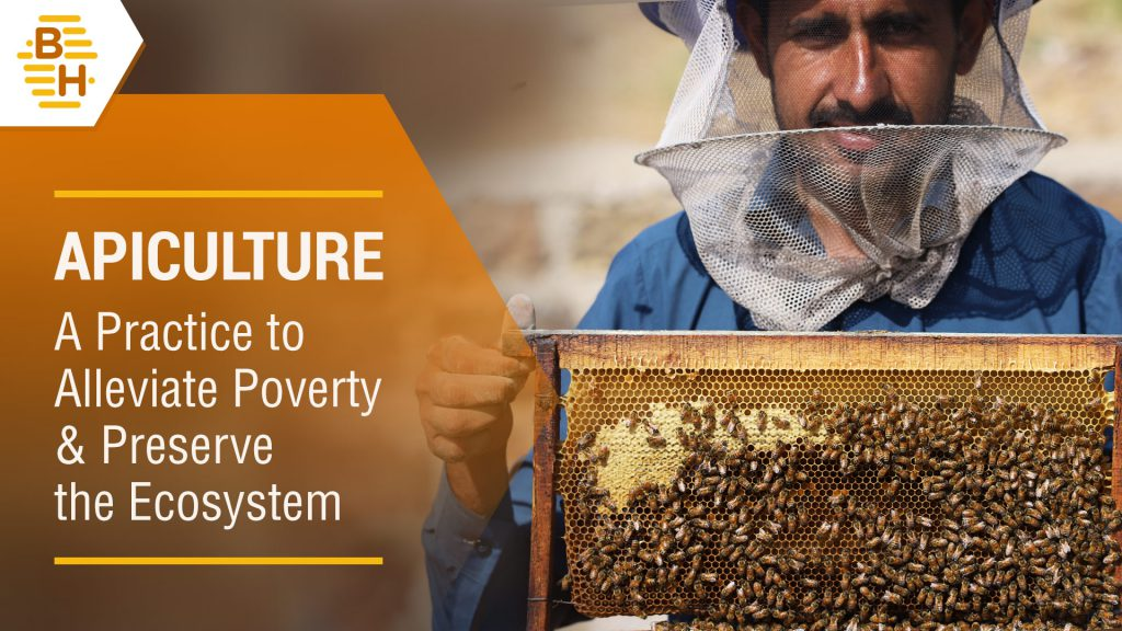 Apiculture - A Practice to Alleviate Poverty & Preserve the Ecosystem