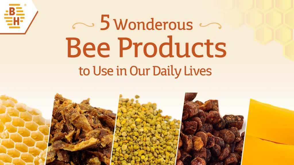 5 Wonderous Bee Products to Use in Our Daily Lives