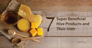 7 Super Beneficial Hive Products Their Uses